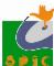 Programmer/State Coordinator Jobs in Chandigarh - SPIC