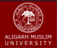 Guest Teachers English Jobs in Delhi - Aligarh Muslim University