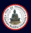Research Associate MA Jobs in Noida - Gautam Buddha University