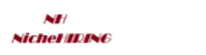 IT Recruiter@ Bommsandra Jobs in Bangalore - Niche Hiring Pvt Ltd