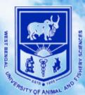 SRF Aquaculture Jobs in Kolkata - West Bengal University of Animal & Fishery Sciences