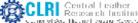 SRF/JRF/Project Asst. Civil Engineering Jobs in Chennai - CLRI