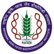 Research Associate/ SRF Basic Science Jobs in Mohali - National Agri-Food Biotechnology Institute