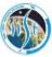 Ph.D. Programme Jobs in Delhi,Thiruvananthapuram,Mumbai - IIST