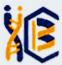 JRF Chemistry Jobs in Kolkata - IICB