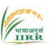 SR/JRF/Young Professional Agricultural Sciences Jobs in Hyderabad - Indian Institute of Rice Research