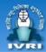 JRF Basic Science /SRF Jobs in Bareilly - IVRI