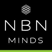 Business Analyst cum Software Tester Jobs in Jodhpur - NBN Minds Pvt. Ltd.