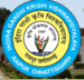 Teacher Agricultural Engg. Jobs in Raigarh - Indira Gandhi Krishi Vishwavidyalaya