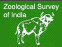 JRF Computer Science Jobs in Kolkata - Zoological Survey of India