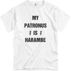 My Patronus Is Harambe