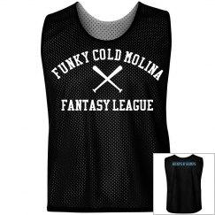 Fantasy Baseball League