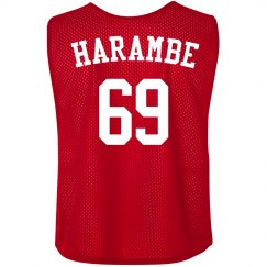 Harambe Jersey Pinnie