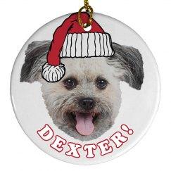 Make Your Dog Santa