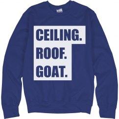 Ceiling Roof Goat Chapel Hill