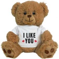 I Like You Valentine's Day Gift