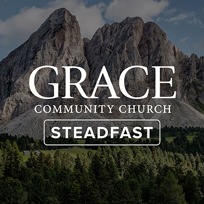 what does steadfast mean