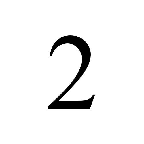 2 digit two times new roman regular graphemica