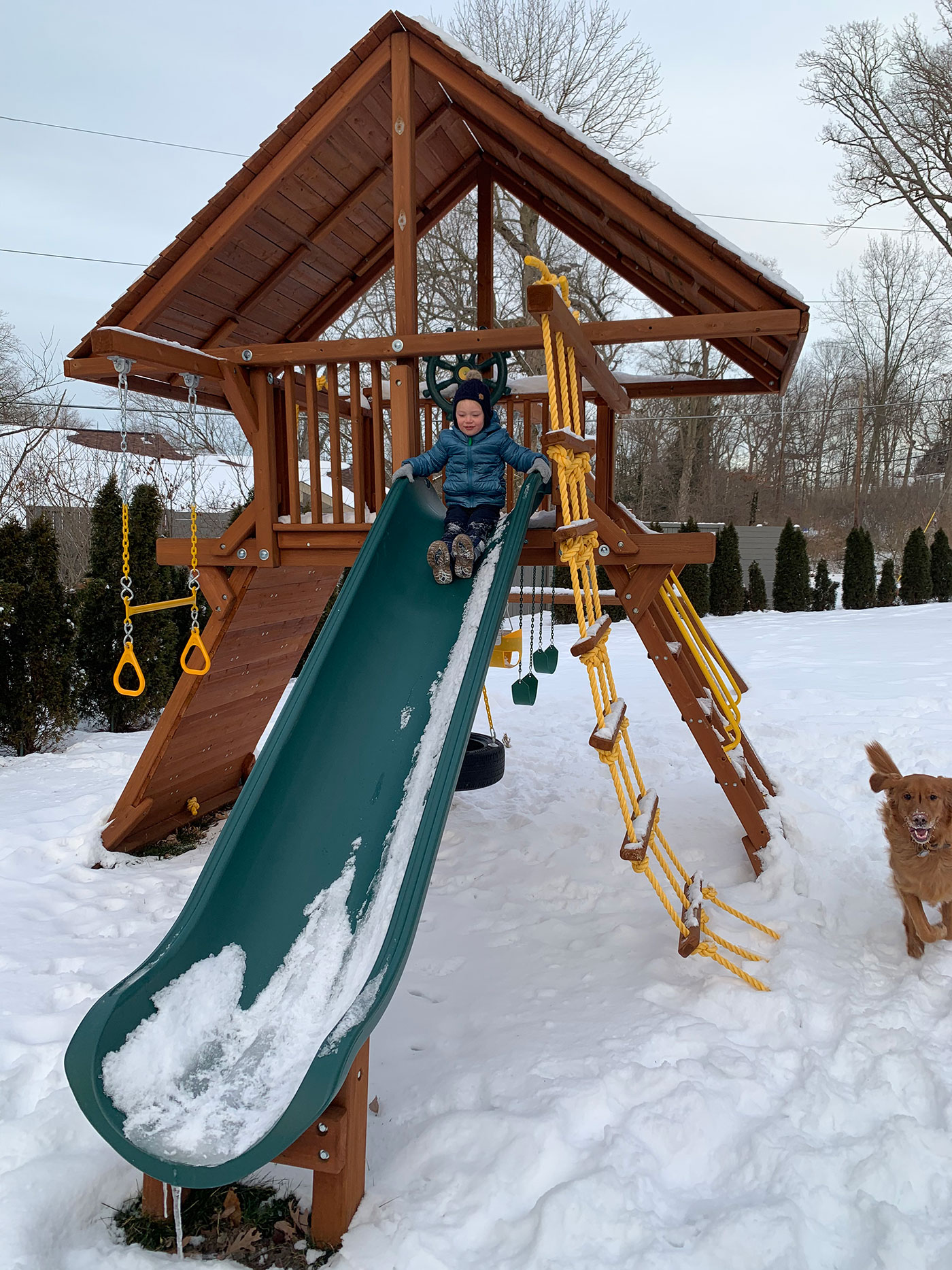 My son sliding down a slide while my dog runs in the background