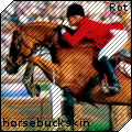 horsebuckskin