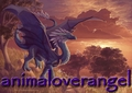animaloverangel