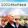 10014horses
