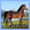 dracor