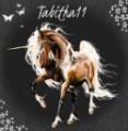 tabitha11