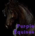 purpleequines