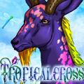 tropicalcross