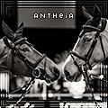 antheia