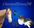 catsandhorses94