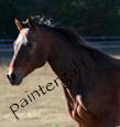 paintergal11