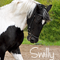 swilly