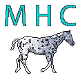 myhorsecisco