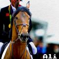 ali64