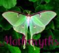 mothmyths