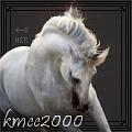 kmcc2000