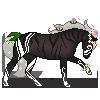 wildhorse027