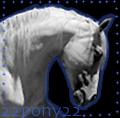 22pony22
