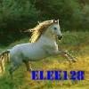 elee128