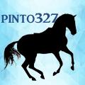 pinto327
