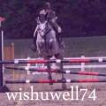 wishuwell74
