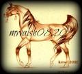 mwalsh0820