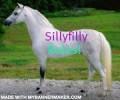 sillyfilly