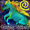 cooldaze juniper
