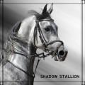 shadow stallion