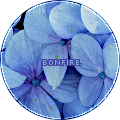 bonnietessa