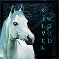 ~silverwood~