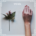 wren.